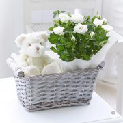 Baby Gift Basket White