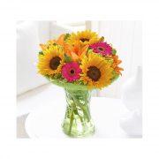 sunflower-perfect-gift-p132-663_image
